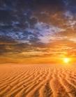 dramatic sunset in a desert